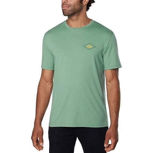 Camiseta Dakine Apple II verde